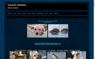 Caccha's Labradors