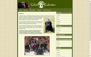 Celtia Labradors