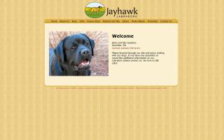 Jayhawk Labradors
