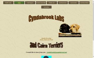 Cyndabrook Labs and Cairn Terriers