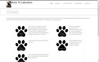 Dakota TK Labradors