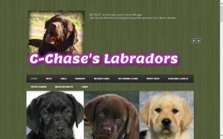 C-Chase's Labradors