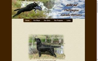 Avokah Multipurpose Labrador Retrievers