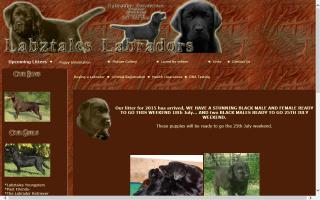 Labztales Labradors