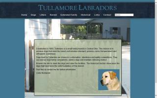 Tullamore Labradors