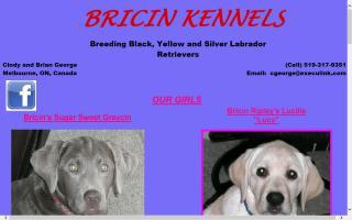 Bricin Kennels