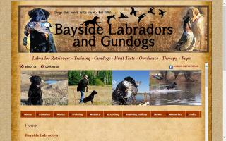 Bayside Labs