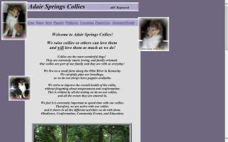 Adair Springs Collies