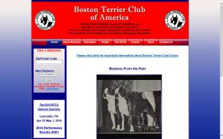 Boston Terrier Club of America - BTCA