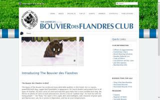 American Bouvier des Flandres Club - ABdFC