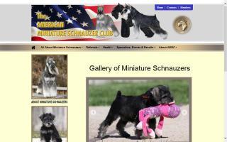 American Miniature Schnauzer Club, The - AMSC