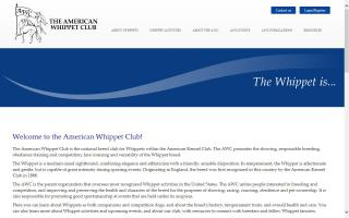 American Whippet Club - AWC