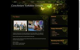 Annwn Yorkshire Terriers