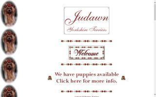 Judawn Yorkshire Terriers