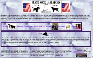 Black Rock Labradors