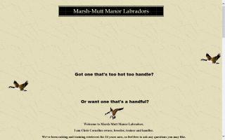 Marsh-Mutt Manor Labradors