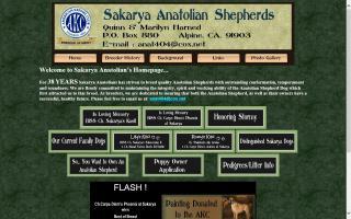 Sakarya Anatolian Shepherds