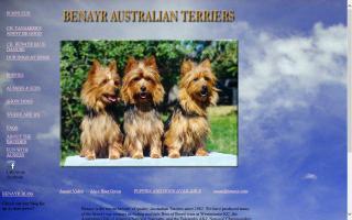 Benayr Australian Terriers