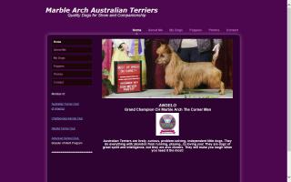 Marble Arch Australian Terriers