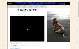 Harmony Hounds