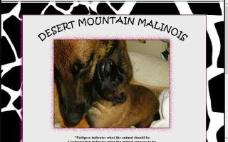 Desert Mountain Malinois