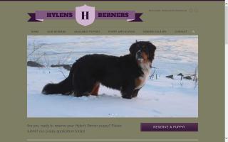 Hylens Berners