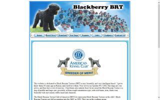Blackberry BRT