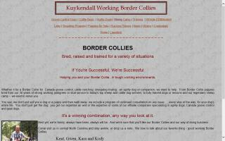 Kuykendall Working Border Collies