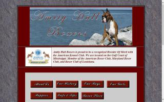 Amity Hall Boxers