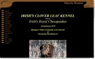 Chessie Central / Irish's Clover Leaf Kennel