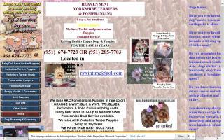 Heaven Sent Pomeranians & Yorkshire Terriers
