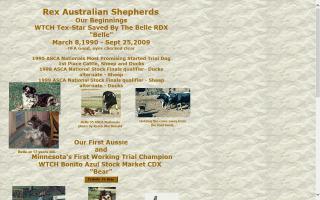 Rex Australian Shepherds