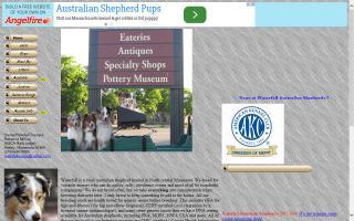 Waterfall Australian Shepherds