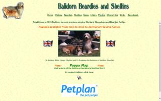 Balidorn Beardies and Shelties