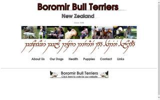 Boromir Bull Terriers