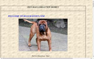 Wild West Bullmastiffs