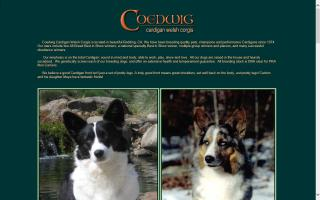 Coedwig Cardigan Welsh Corgis