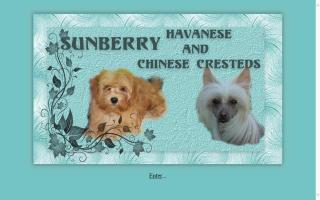 Sunberry Kennels