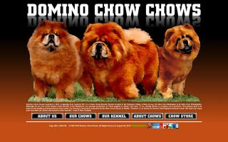 Domino Chow Chows