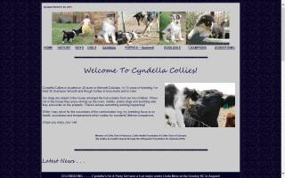 Cyndella Collies