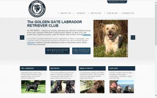 Golden Gate Labrador Retriever Club - GGLRC