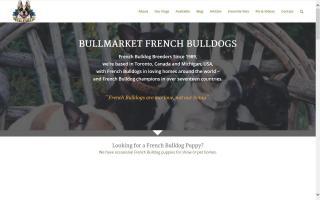 Absolut Bullmarket