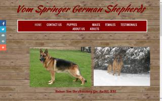 Vom Springer German Shepherds