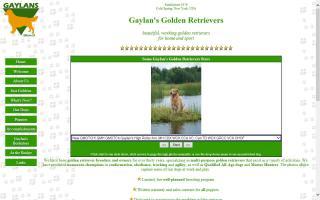 Gaylan's Golden Retrievers