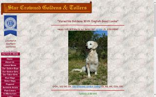 Star Crowned Goldens
