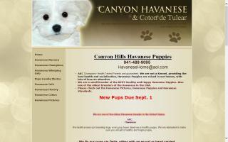 Canyon Hills Havanese  & Coton de Tulear