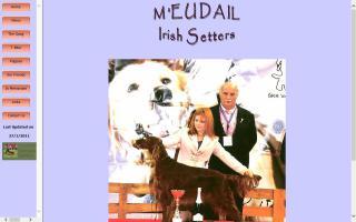 M'Eudail Irish Setters