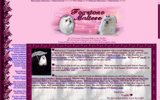 Foxstone Maltese