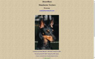 DesertRose Manchester Terriers