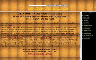 Mettrick Quarter Horses / MQH Kennel